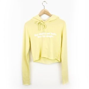 NWT Wildfox Yes That's Cat Hair Single Sweatshirt